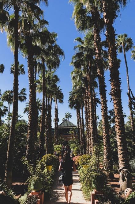 Jardin Majorelle Garden Marrakesh